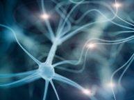 طالعه نشان می دهد که سلول های بنیادی برگرفته از سلول های پوستی افراد مبتلا به ام اس، میلین عایق عصبی را به مقدار طبیعی ایجاد می کنند