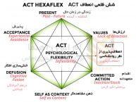 درمان مبتنی بر پذیرش و تعهد (ACT)
